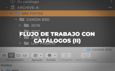 Flujo de trabajo con Catálogos (II)